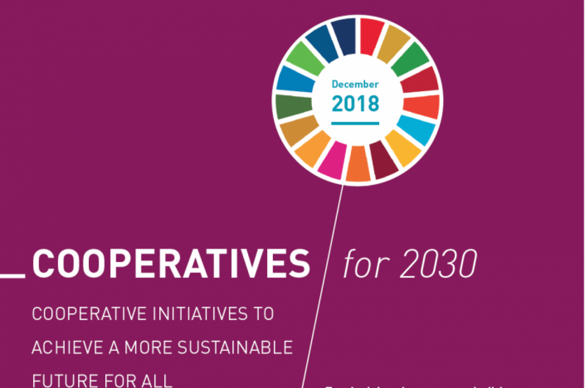 Fundraising Campaign: Coops & SDGs 2030